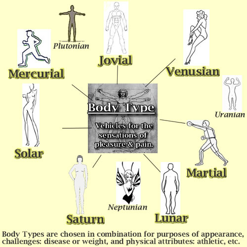 Body Types as Overleaves defined in the Michael Teaching