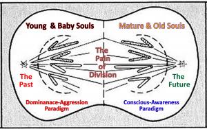 Mitosis-Soul-Age-Split